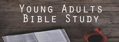 young adult Bible